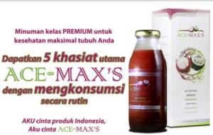 Ace-Maxs1